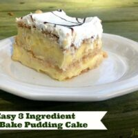 Easy 3 Ingredient No Bake Pudding Cake!