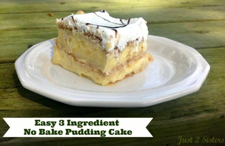 Easy 3 Ingredient No Bake Pudding Cake!