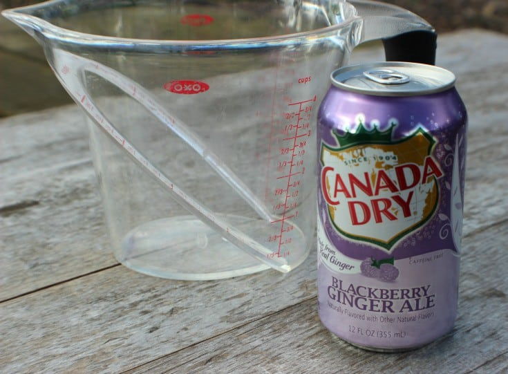 Blackberry Campfire Cobbler Canada Dry