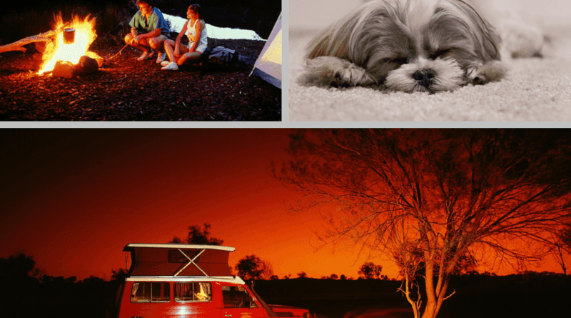 Camping Safety for Pets just2sisters.com