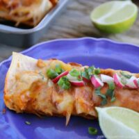 Weight Watchers Chicken Enchiladas Recipe