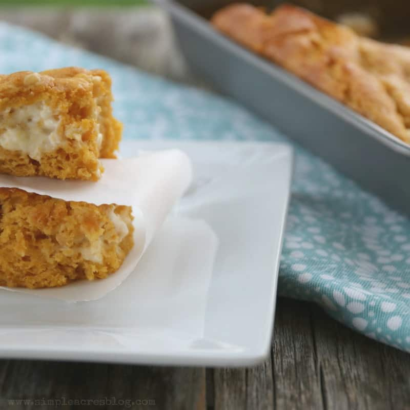 These Weight Watchers Pumpkin Bars Recipe with a swirl of cream cheese, offers decadent flavors all while keeping yourWeight Watcher points in check.