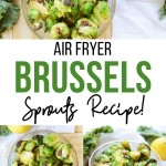 One of the pins for these delicious air fried Brussels sprouts.