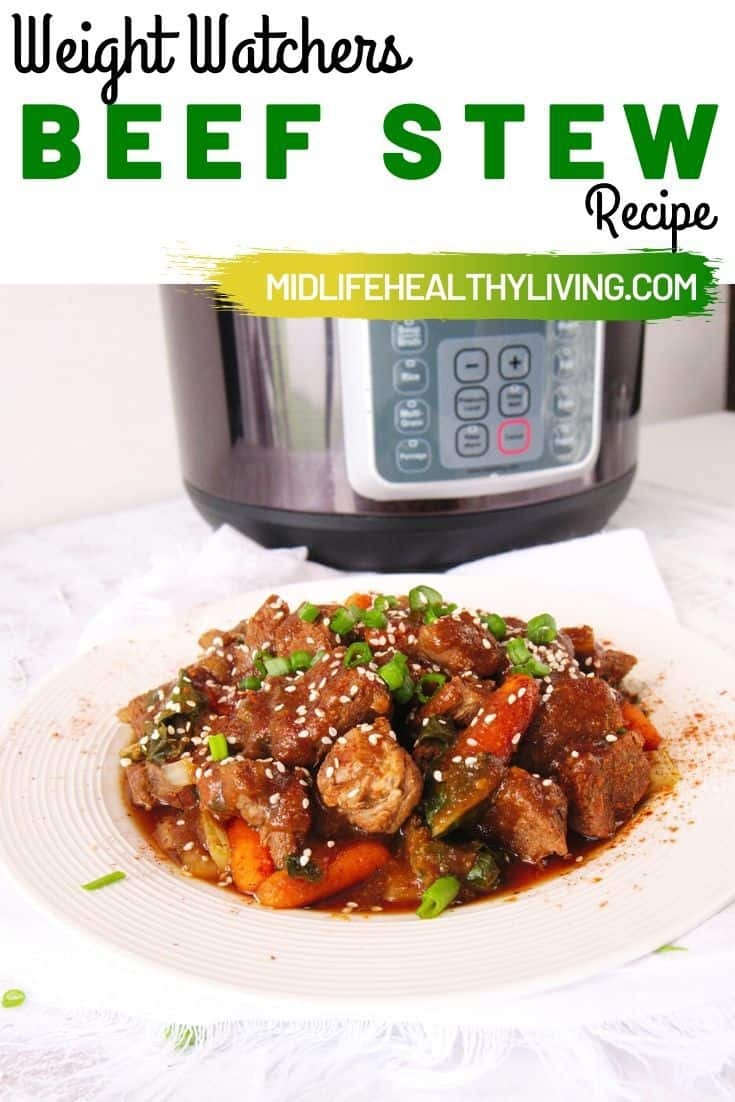 A final pin showing the finished asian beef stew recipe for Weight Watches with title at the top.