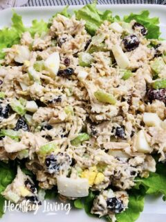 Featured image showing the finished weight watchers chicken salad ready to eat.